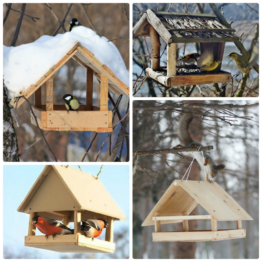 Как делать кормушки для птиц своими руками фото