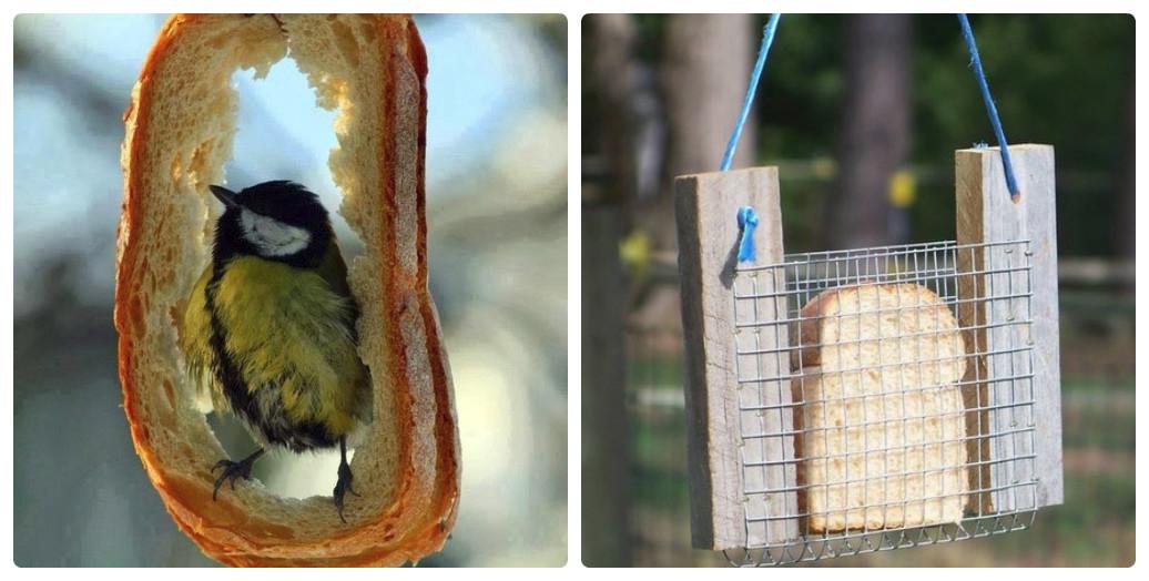Креативная кормушка для птиц своими руками фото 55