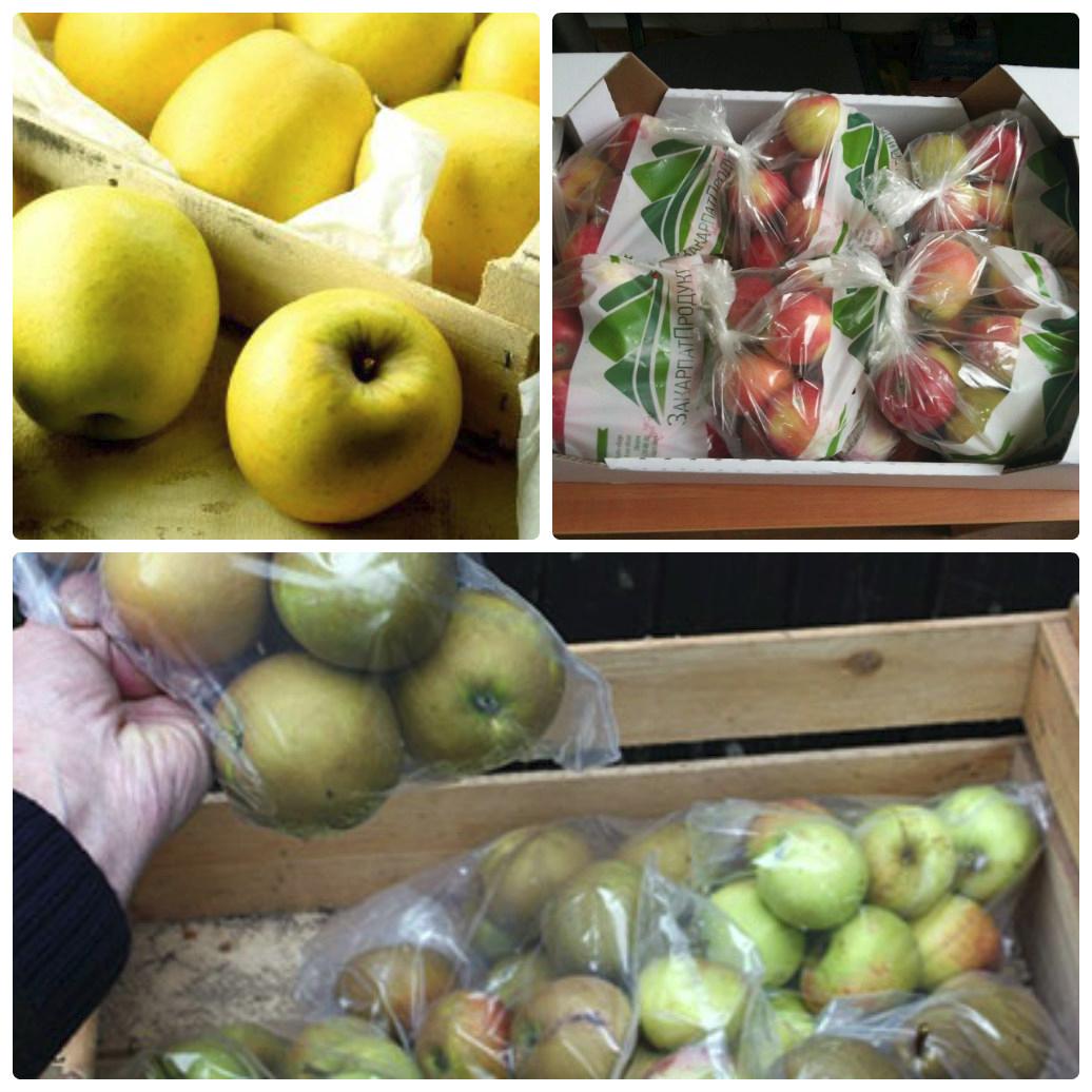 Переработка яблок в домашних условиях на зиму 169