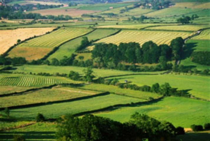 изгнание Получение имущественного пая в колхозе земля остается мне