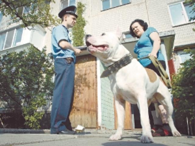 Административная ответственность за выгул собак без намордника тем